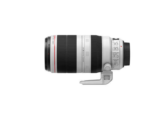 Canon EF 100-400mm f/4.5-5.6L IS II USM - 5